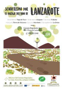 Senderismo paisaje del vino de Lanzarote 2017