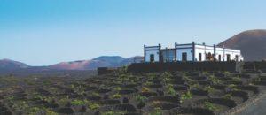 Bodega La Geria de Lanzarote premiada en Mono Vino y Pequenas D.O