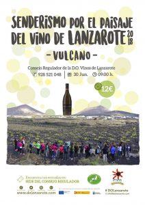 SENDERISMO-VINO-DE-LANZAROTE-2018-VULCANO