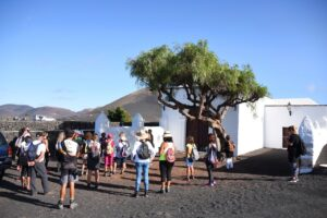 Sendero por La Geria Semana Malvasía 2020 de los Vinos de Lanzarote